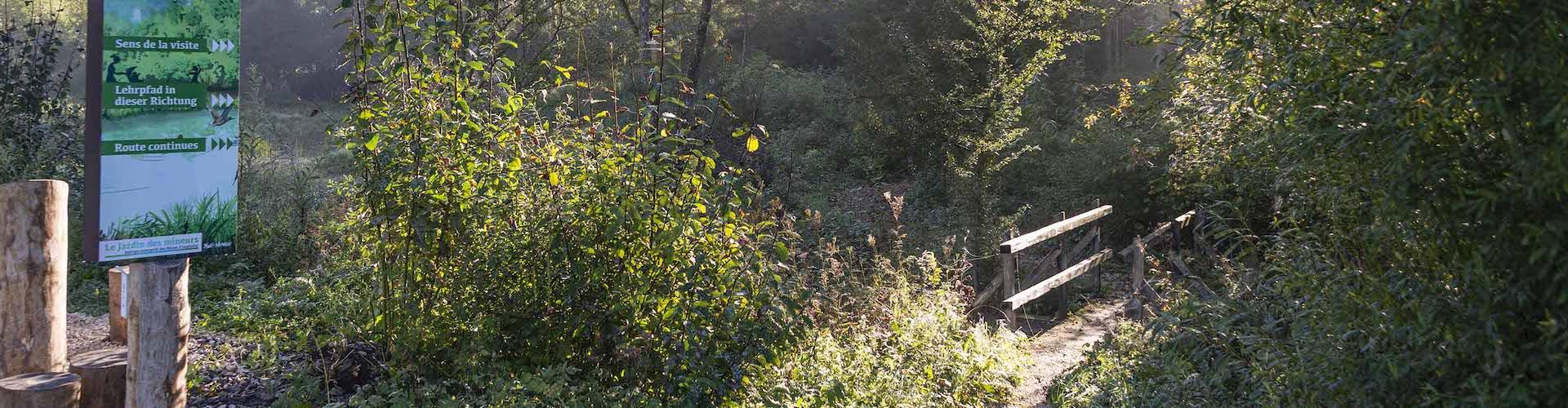 Der Garten der Minenarbeiter, Asphaltminen von La Presta, Val-de-Travers